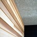 新潟市中央区 完成見学会のお知らせ
